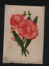 RARE old Silk cigarette card  English flowers Olender #779